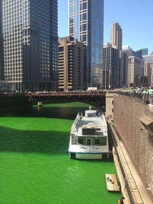 Saint Patrick Chicago 1