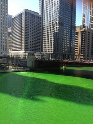 Saint Patrick Chicago 3