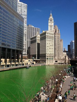 Saint Patrick Chicago 8