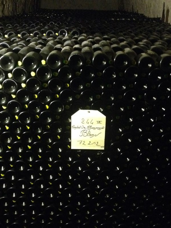 Caves Taittinger 13
