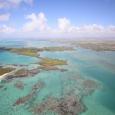 Amber Island