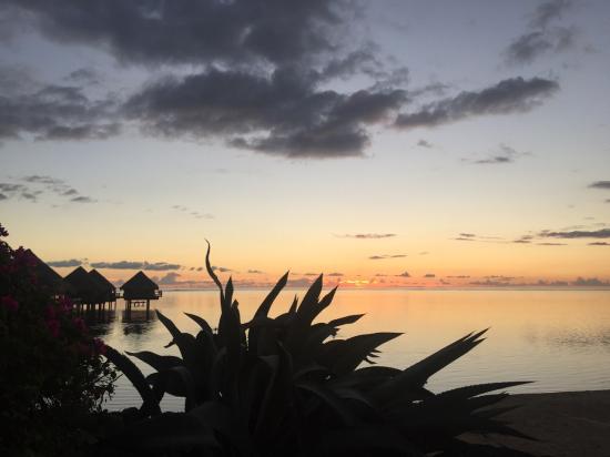 Tahiti 17