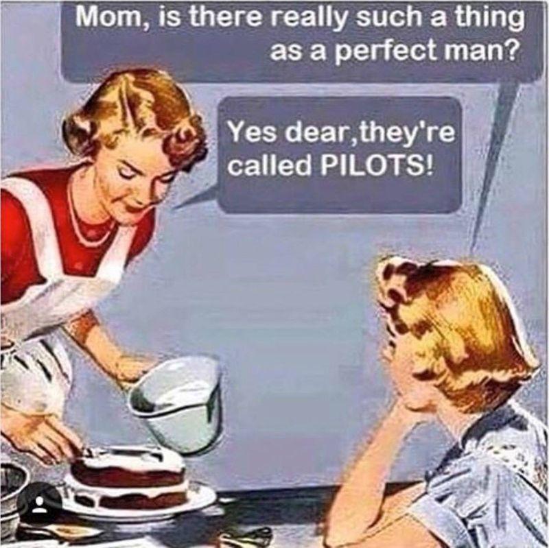 Perfect man pilot