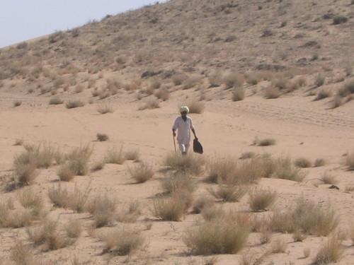 J5_desert_3